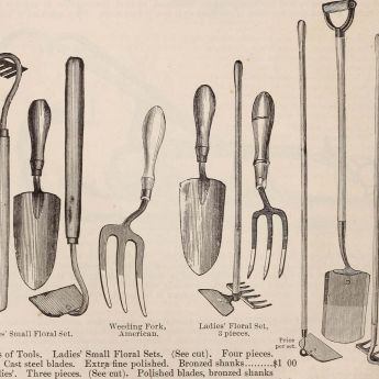 Essential tools for serious gardeners